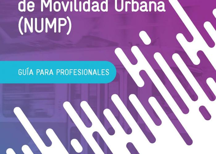 NUMP Guidelines Spanish_cover.jpg