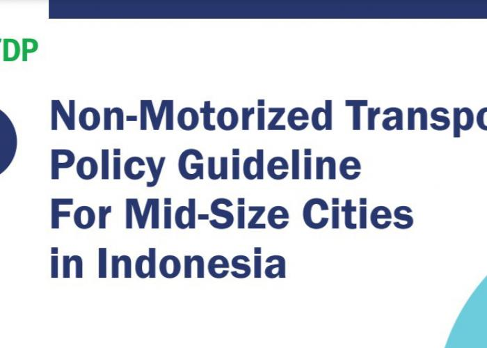 NMT guidelines Indonesia_1.jpg