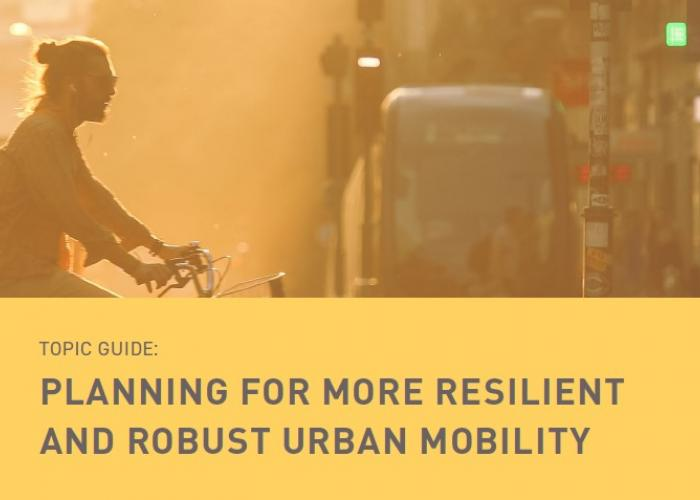 Planning for more resilient and robust urban mobility.jpg